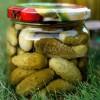 Korniszony – ogórki konserwowe
